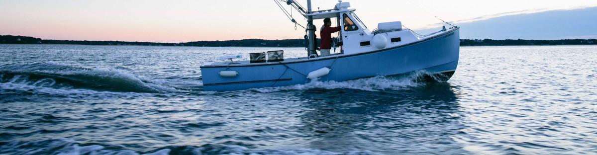 cropped-20130904_progressive_oysters_021.jpg
